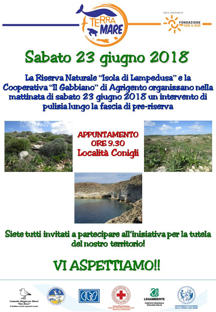 locandina pulizia_2018 terramare.jpg